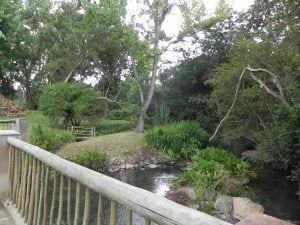 Valley Lodge Gardens 1